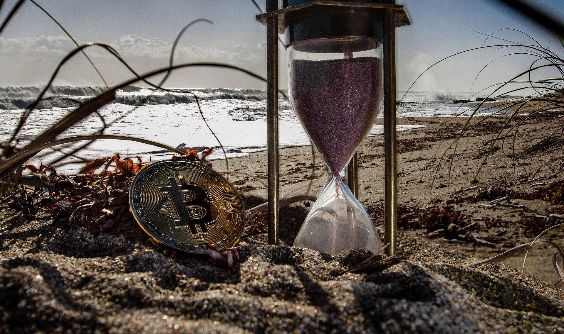 die Bären bei Bitcoin Trader